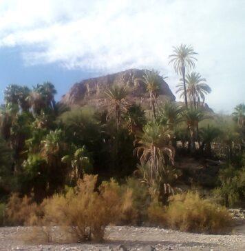 Viaje a las Pocitas Baja California Sur